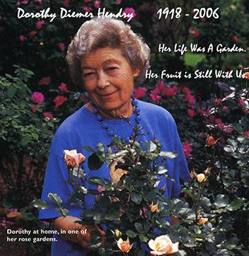 Dorothy with one of her over 300 varieties of Roses in her garden in Huntsville, Alabama